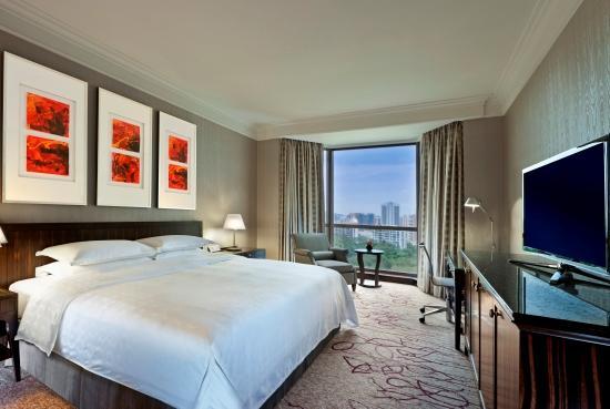 酒店房型图片